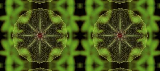 Flowerbed-03-06