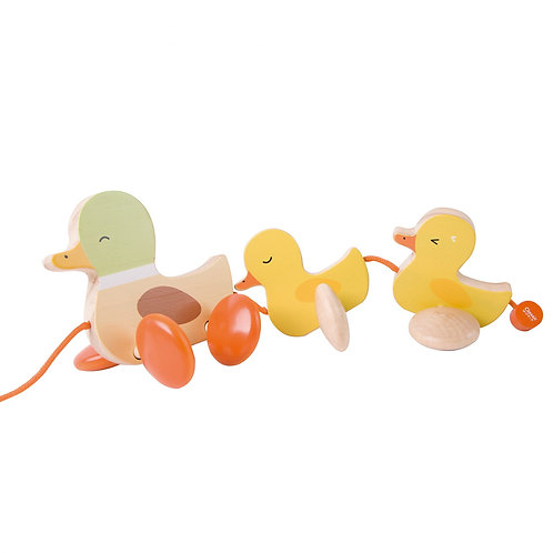 Classic World Pull Duck