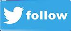 Twitter-follow-button.png