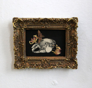 Rabbit Skull, Collage