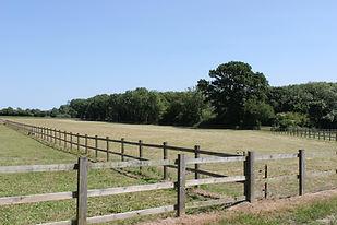 fields5.jpg