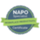 NAPOSpecialistWorkplaceProductivity.png