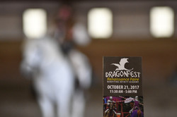 dragonfest-2017_23989606938_o