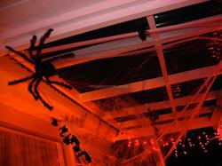 MyScaryHouse_2005_08