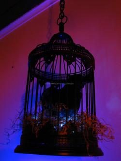 MyScaryHouse_2008_12