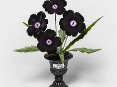 Target's Creepy Plants are Back! ...And Already Sold Out