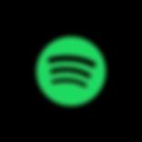 Spotify Lusi Austin Walking Contradiction