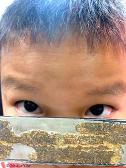 Sergio- Fijándonos en las formas de los ojos