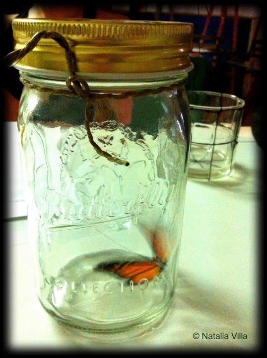 La mariposa de mentirijita.jpg.jpg