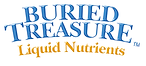 Buried Treasure Logo.png
