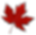 Canada-Leaf-PNG-Image.png