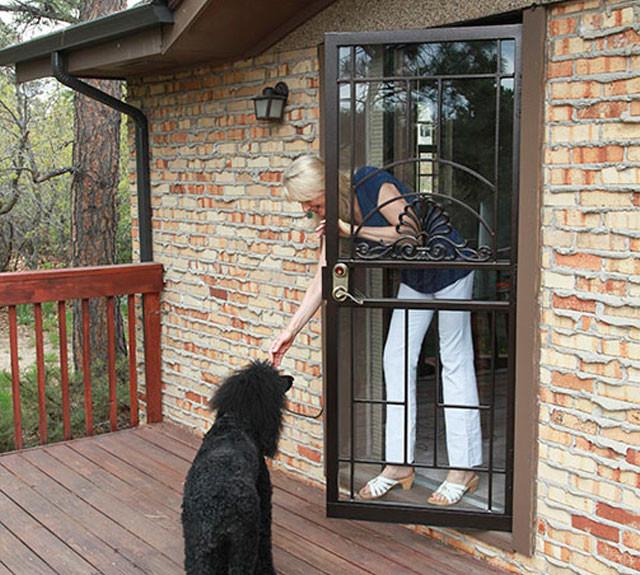 LHP Door Dog.jpg