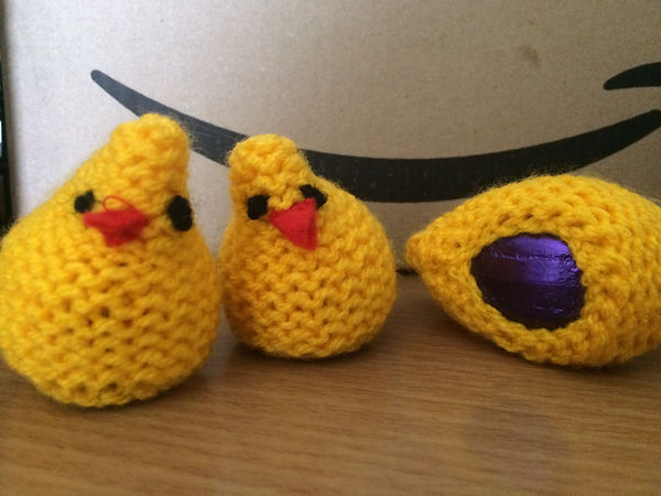 chicks made.jpg