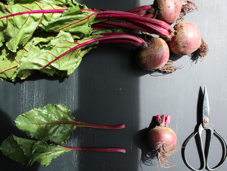 We need to talk about (No1).. BEETROOTS