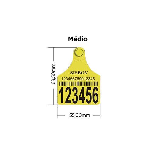 Brincos de Identificação - Médio (14107)