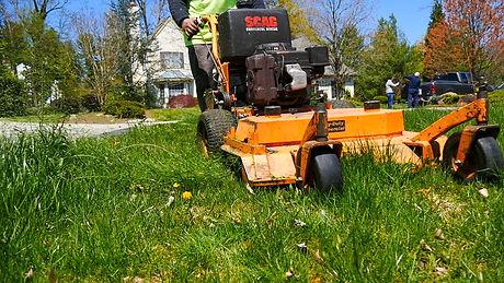 mowing 2.jpg