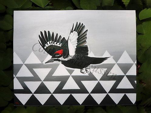 Kokonow (woodpecker)