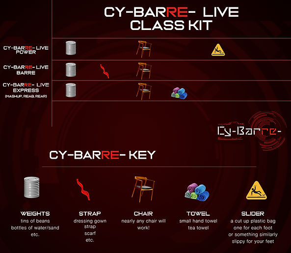 cybarre_chart_graphic03.jpg