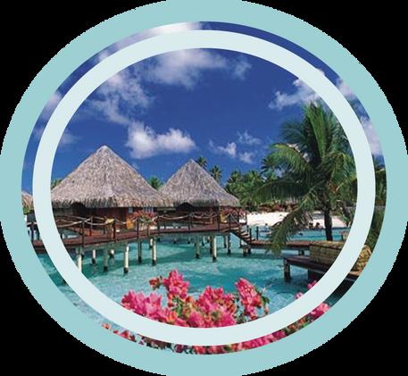 Coco de Tahití