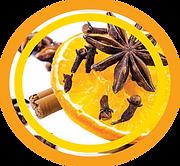 Citrus spice scented desinfetante para banheiros portáteis