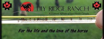 Lilyridge.jpg