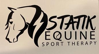 Statik  logo_edited.jpg