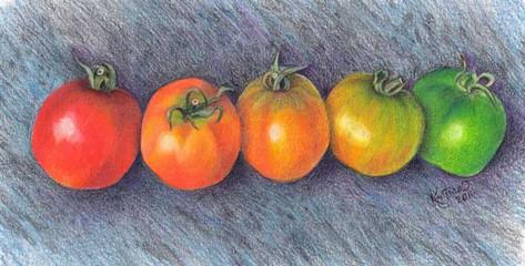 tomato-rainbow.jpg