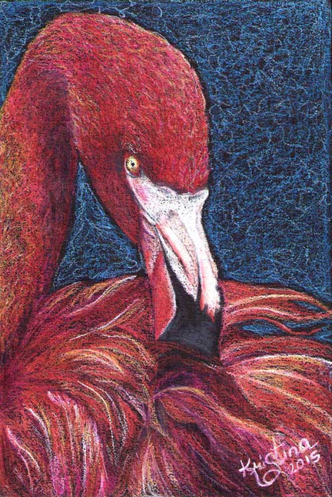 flamingo-reduced-size.jpg