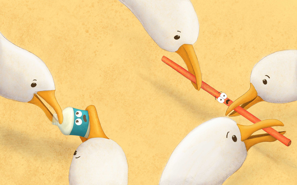 WEB-Seagulls-Standing-Over.jpg