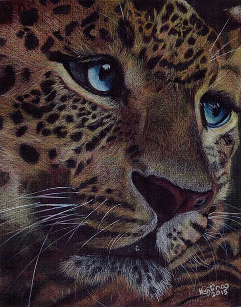 Jaguar-WEB.jpg
