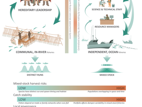 New Paper - Indigenous Fishery Systems for Salmon promote sustainability and resilience