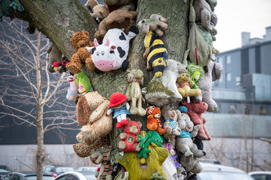 Animal-Tree.jpg
