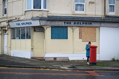 The-Dolphin.jpg
