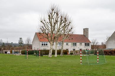 Stengården-Tree-Goal.jpg
