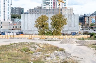 2-Trees-Building-Site.jpg