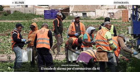 EL PAIS.jpg