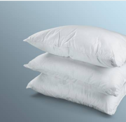 pillows inserts.PNG