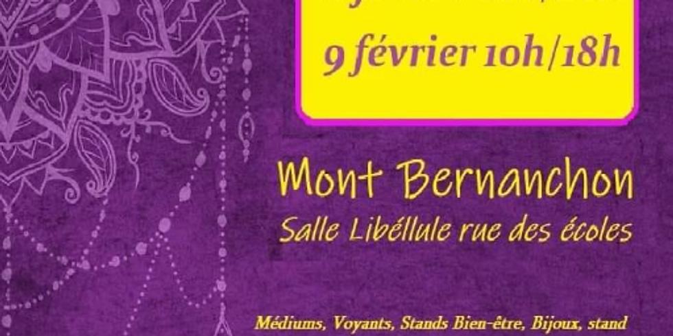 Salon Mont Bernanchon - Conférences