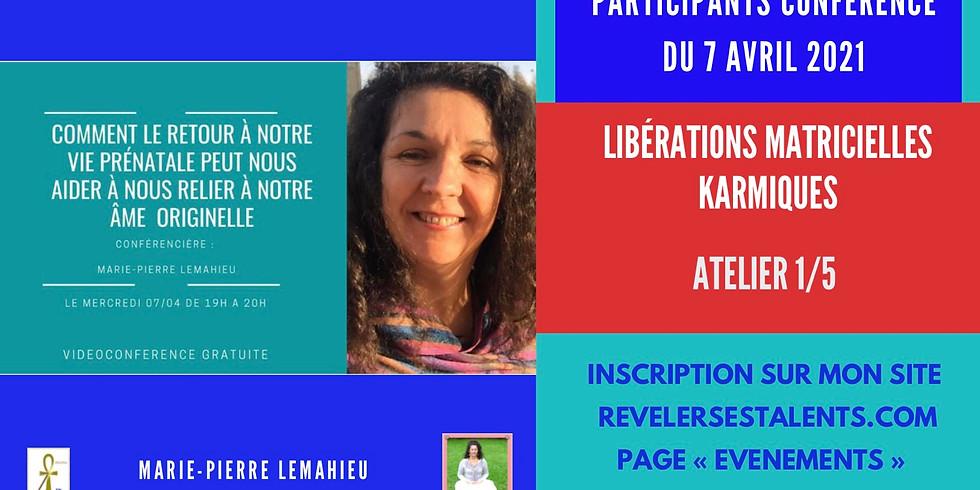 Soin de Libérations Matricielleskarmiques + questionnaire personnalisé