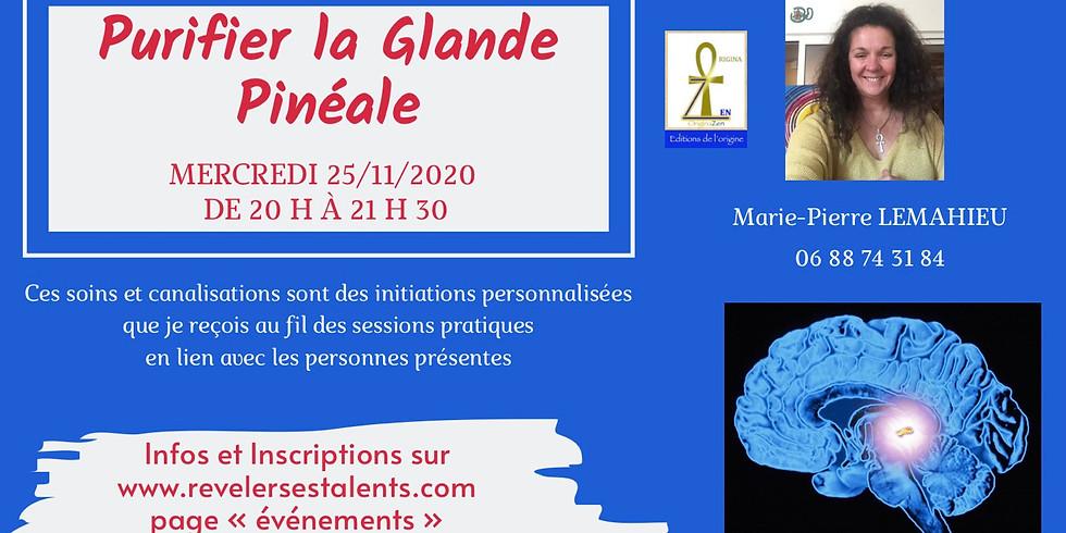 Soin collectif de Purification et activation de la Glande Pinéale
