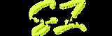 Shade Zahrai Logo.png
