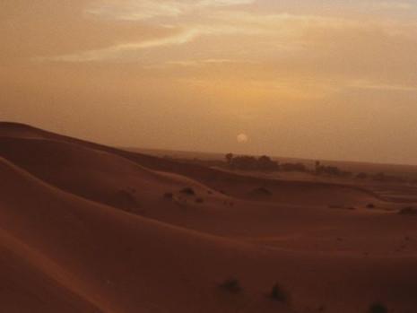 """Resenha: """"Uma Tocha na Escuridão"""" (Uma Chama entre as Cinzas vol. 2) de Sabaa Tahir"""