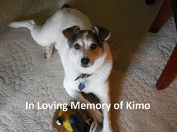 Kimo_in_memorium (2)
