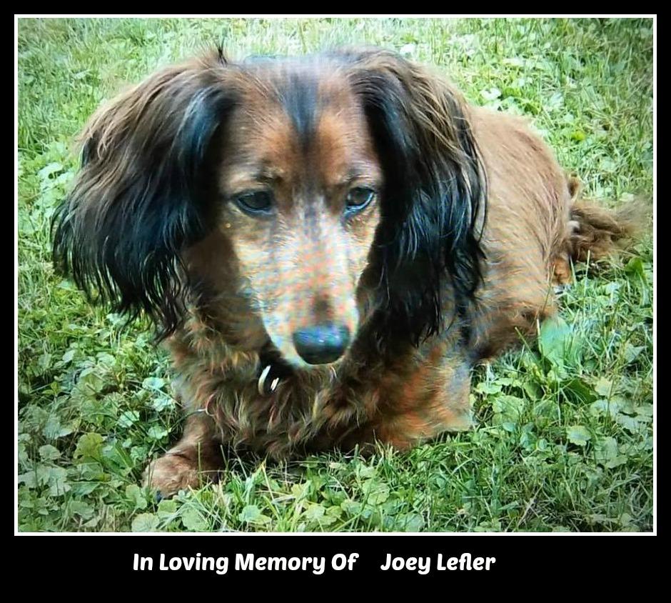 Joey Lefler