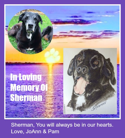 In Memory Of Sherman