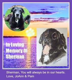 In Memory Of Sherman