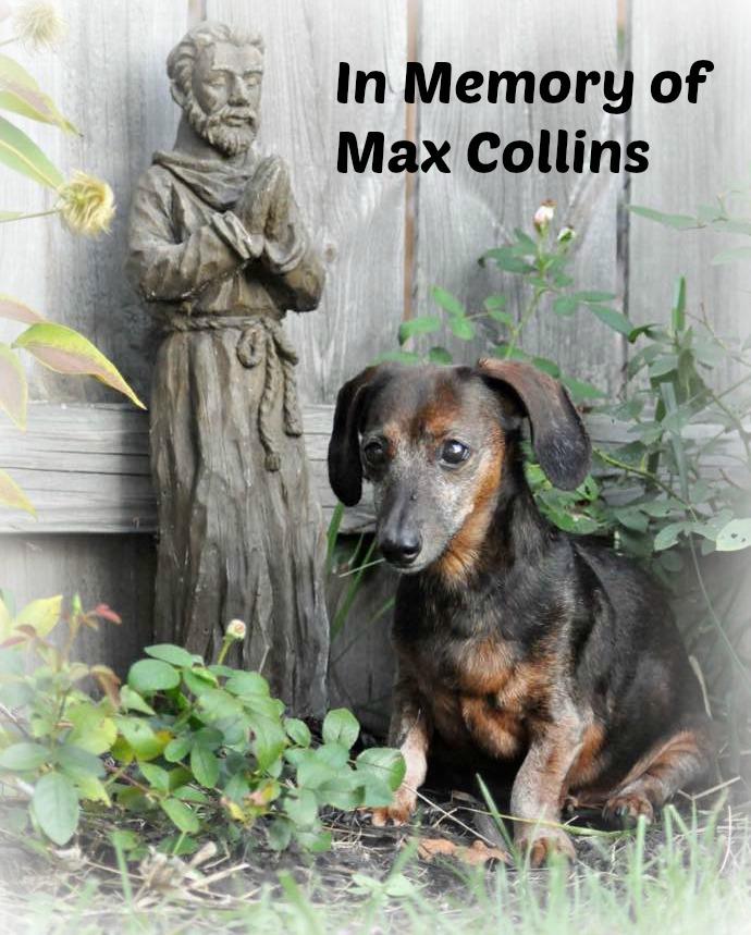 In memory of Max