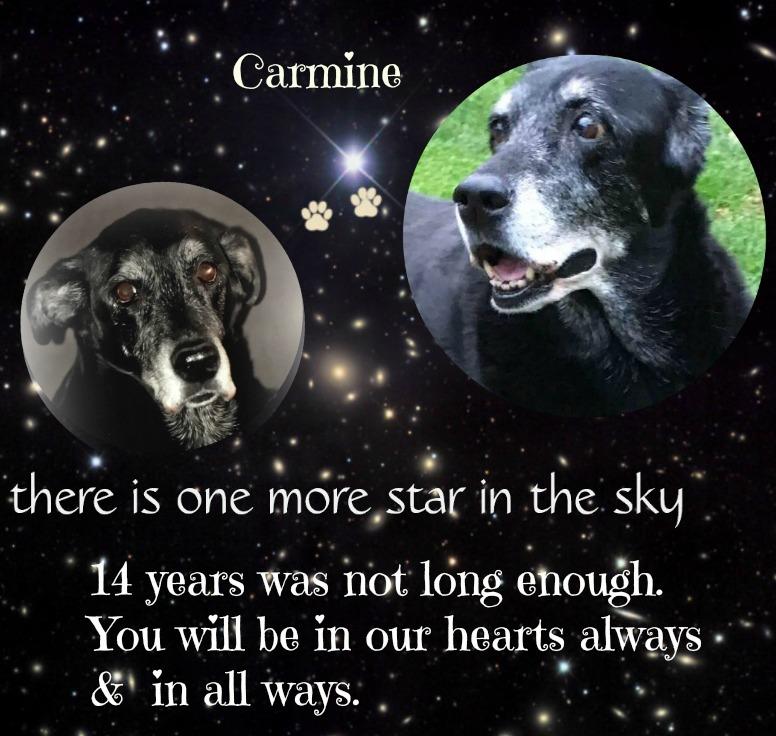 Our Carmine