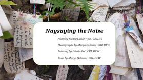 Naysaying the Noise