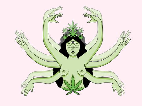 Poder da Planta por Mayara Moraes